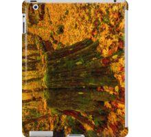 Fall Leaves Mosaic iPad Case/Skin