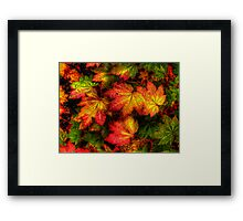 Pop Out ~ Leaves Vine Maple ~ Framed Print