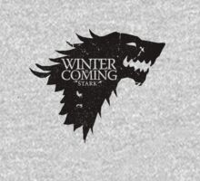 House Stark by GarfunkelArt
