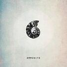 Ammonite by Ingz