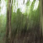 Woodland Abstract #1 by Dale Rockell