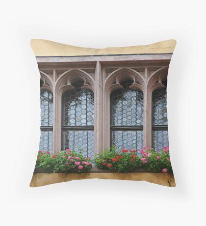Four Windows Throw Pillow