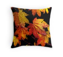 Another Good Day ~ Leaves Fall Colors ~ Throw Pillow