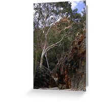 Ghost Gum Greeting Card