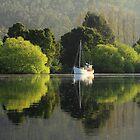 Derwent River by phillip wise