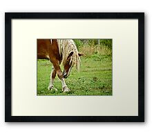 Bow to Me Framed Print