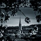 Salisbury Cathedral from afar by Tobias King