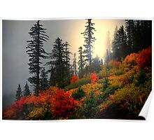 Peace Of Mind ~ Fall Colors ~ Poster