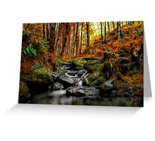 My Little Place ~ Fall Colors ~ Greeting Card