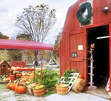 The Produce Stand on Blackjack Road by Nadya Johnson