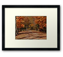 Choosing Our Path Framed Print