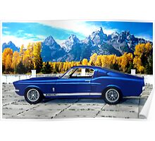1967 Shelby Cobra Mustang GT 500 Poster