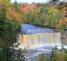 Michigan's Tahquamenon Falls by Kenneth Keifer