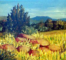 Carolina Foothills by Jim Phillips