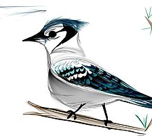 Blue Jay The Watch by Danielle Girouard