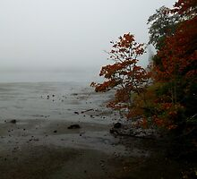 Foggy Autumn Morning by RdwnggrlDesigns