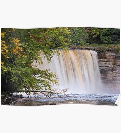 Tahquamenon Falls from the River Poster