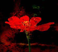 Flower Of Hope by tropicalsamuelv