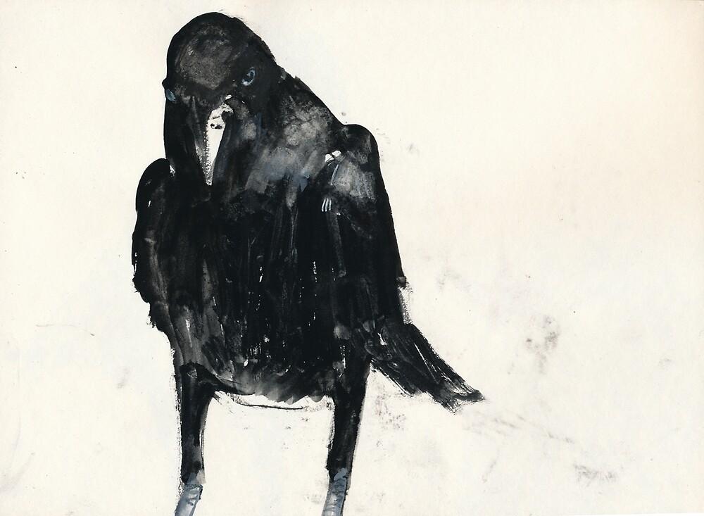 Australian Raven1 by WoolleyWorld