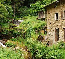 Abandoned Mill Near Salino 3 by jojobob