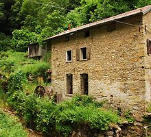 Abandoned Mill Near Salino 5 by jojobob