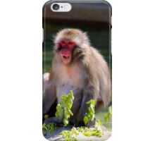 Snow Monkey iPhone Case/Skin