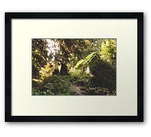 Dwarf Dwelling Framed Print
