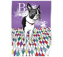 B is for Boston Terrier III Poster
