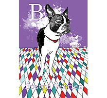 B is for Boston Terrier III Photographic Print