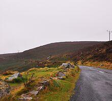 On the Road Again by Farrah  Jones