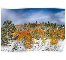 Rocky Mountain Autumn Storm Poster