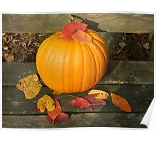 pumpkin and leaves Poster