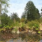 Van Dusen Botanical Garden water pond, water plants, bushes, trees, blue sky and white clouds. Oil painting style landscape photography. by naturematters