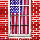 America in the Window by Harlan Mayor