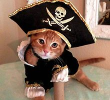 Ahoy mateys, I've come to plunder ye aww! by catdose