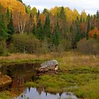 Ontario Autumn by goddarb