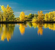 Autumn Trees and Lake Reflections by Photopa