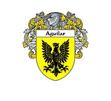 Aguilar Coat of Arms/Family Crest Photographic Print