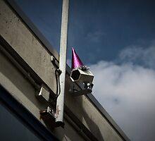 George Orwell's Birthday Party Purple by Bas van Oerle