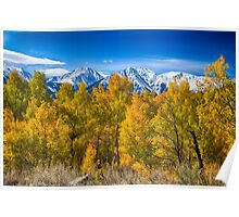 Independence Pass Autumn View Poster