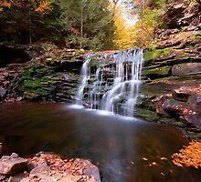 Fall Leaves Adorn Cayuga Falls by Gene Walls