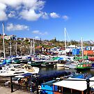 Resting Harbor near SS Great Britain by Arvind Singh