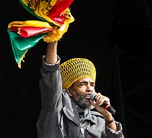 Don Carlos - Black Uhuru, Electric Picnic 2013 by DanButlerPhoto