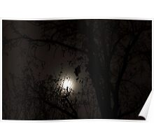 Moon behind the trees Poster