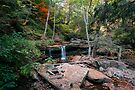 Delaware Falls On A Warm October Day by Gene Walls