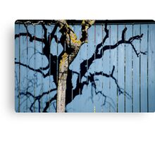 Twisted Shadows Canvas Print