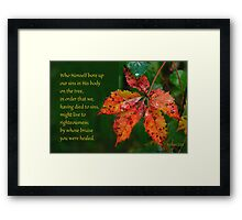 Bore our sins in His Body on the tree ~ 1 Peter 2:24 Framed Print