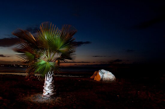 Palm and rock. by mezzluc