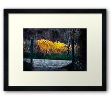 Beyond the Posts Framed Print