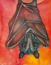 Flying Fox At Rest by Lynnette Shelley